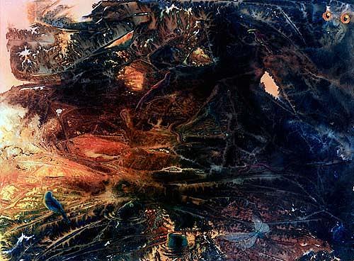 Achim Prill, Vegetation, Natur: Diverse, Diverse Tiere, Gegenwartskunst, Abstrakter Expressionismus