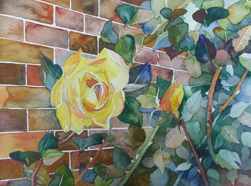 bunte mauer c rosen aquarell von frank koebsch von frank koebsch pflanzen blumen natur. Black Bedroom Furniture Sets. Home Design Ideas