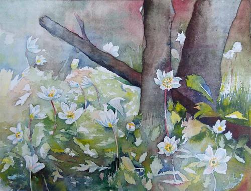Frank Koebsch, Blütenmeer im Frühling (c) Aquarell mit Buschwindröschen von FRank Koebsch, Pflanzen: Blumen, Natur: Erde, Gegenwartskunst