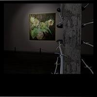 eq, Virtual Exhibition
