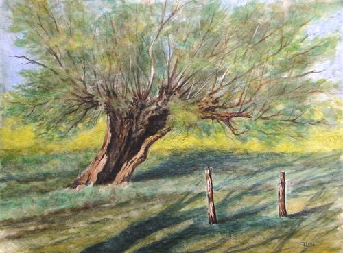 Joachim Lilie, Feldweide, Landschaft: Sommer, Pflanzen: Bäume, Realismus, Expressionismus