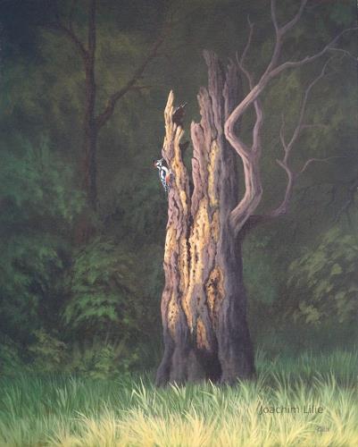Joachim Lilie, Buntspecht, Natur: Wald, Landschaft, Realismus