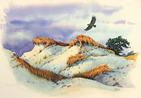 Joachim-Lilie-Landschaft-Strand-Tiere-Luft-Neuzeit-Realismus