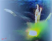 Orfeu-de-SantaTeresa-Diverse-Weltraum
