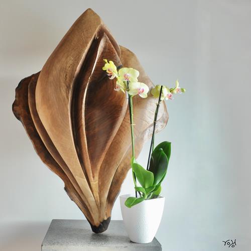 Roland Köpfer, Orchidee, Akt/Erotik: Akt Frau, Pflanzen: Blumen, Gegenwartskunst, Expressionismus