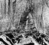 LIMITaRT-JE.Fall-Poesie-Gefuehle-Depression-Moderne-Expressionismus-Neo-Expressionismus