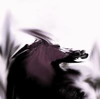WERWIN, NUCLEAR BEAST