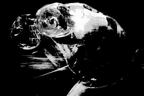 Rotraut Richter, Blasentier-, Fantasie, Skurril, Gegenwartskunst, Abstrakter Expressionismus