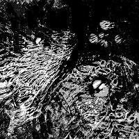 Rotraut-Richter-Natur-Wasser-Tiere-Wasser-Gegenwartskunst-Gegenwartskunst