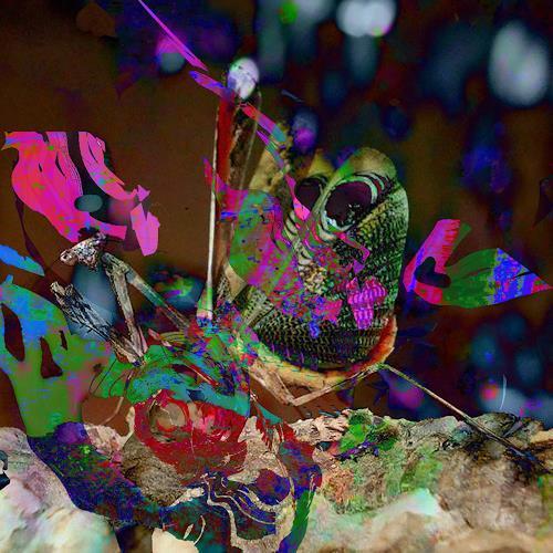 Rotraut Richter, Libelle, Diverse Tiere, Fantasie, Gegenwartskunst