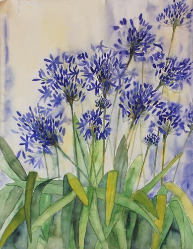 Philippin, Inge, Acapanthus 1, Pflanzen: Blumen, Gegenwartskunst