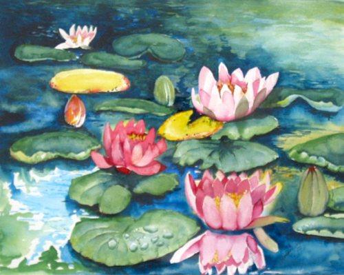 Stephanie Zobrist, Seerosen, Natur: Wasser, Pflanzen: Blumen, Naturalismus