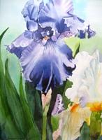 Stephanie-Zobrist-Zeiten-Fruehling-Pflanzen-Blumen-Neuzeit-Realismus