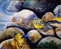 Stephanie-Zobrist-Natur-Wasser-Tiere-Luft-Moderne-Naturalismus