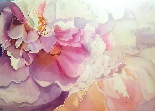 Stephanie Zobrist, Rosen Macro, Pflanzen: Blumen, Natur, Naturalismus, Expressionismus
