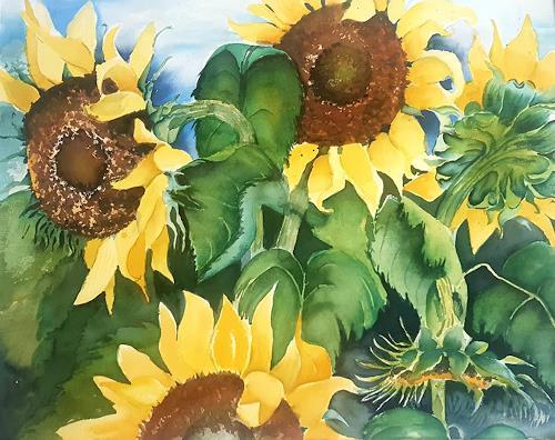 Stephanie Zobrist, Sonnenblumen, Pflanzen: Blumen, Landschaft: Herbst, Naturalismus, Expressionismus