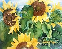 Stephanie Zobrist, Sonnenblumen