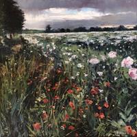 Martina Krupickova, Summer Poppies