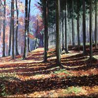 Martina Krupickova, Enchanted forest