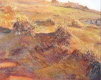Renée König, Sonnenaufgang in Namibias Dünen