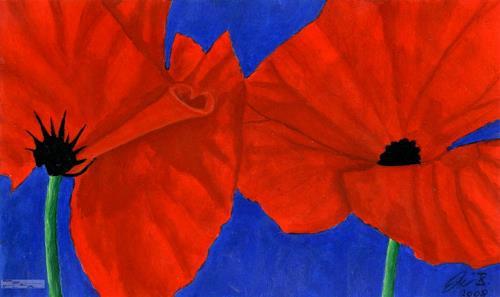 MartinusLinzer, Mohnblüten, Pflanzen: Blumen, Natur: Diverse, Gegenwartskunst
