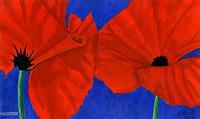 MartinusLinzer-Pflanzen-Blumen-Natur-Diverse-Gegenwartskunst--Gegenwartskunst-