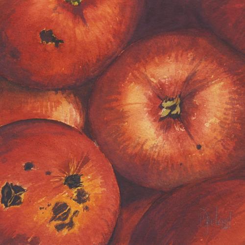 Daniel Gerhard, Äpfel (biologisch), Pflanzen: Früchte, Stilleben