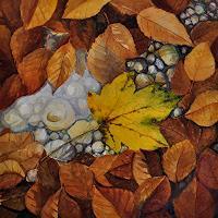 Daniel-Gerhard-Zeiten-Herbst-Natur-Wald