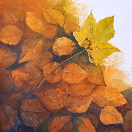 Daniel Gerhard, herbstlich, Pflanzen: Bäume, Zeiten: Herbst