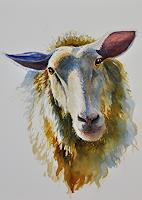 Daniel-Gerhard-Tiere-Land-Natur-Diverse