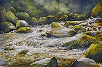 Daniel-Gerhard-Natur-Wasser-Landschaft-Sommer
