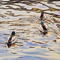 Daniel-Gerhard-Landschaft-Winter-Natur-Wasser-Moderne-Abstrakte-Kunst