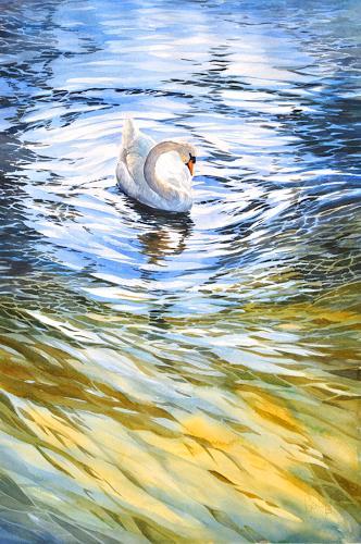 Wasser Natur