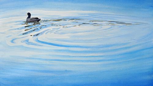 Daniel Gerhard, Blesshuhn, Natur: Wasser, Tiere: Wasser, Abstrakte Kunst