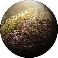 Sankofa-Landschaft-Herbst-Zeiten-Herbst-Moderne-Fotorealismus-Hyperrealismus