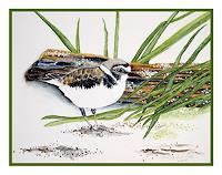 Maria-Inhoven-Natur-Luft-Tiere-Luft-Moderne-Naturalismus