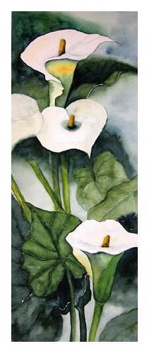 Maria Inhoven, Calla, Pflanzen: Blumen, Natur: Erde, Naturalismus
