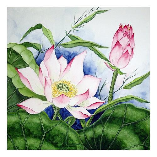 Maria Inhoven, Lotus 2, Pflanzen: Blumen, Natur: Wasser, Naturalismus