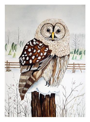 Maria Inhoven, Waldkauz im Winter, Natur: Luft, Tiere: Luft, Naturalismus