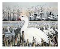 Maria-Inhoven-Natur-Erde-Tiere-Luft-Moderne-Naturalismus