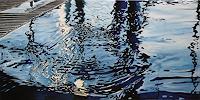 Alex Krull, o.T. (Wasser)