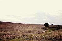 Katharina-Orlowska-Landschaft-Huegel-Landschaft-Herbst