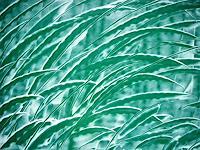 Brigitte-Raz-Goldau-Natur-Diverse-Dekoratives-Gegenwartskunst--Gegenwartskunst-