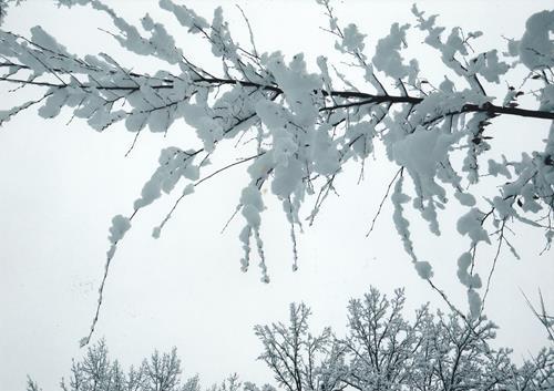 Brigitte Raz-Goldau, Winter 2021  1-5    Nr. 4, Landschaft: Winter, Natur, Gegenwartskunst