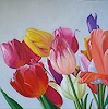 Anne Petschuch, Bunte Tulpen I