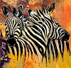 webo, Zebras