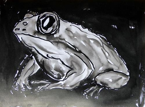 Klaus Ackerer, O/T, Tiere: Wasser