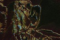 Klaus-Ackerer-Skurril-Moderne-Abstrakte-Kunst