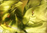 Ulrike-Kroell-Dekoratives-Symbol-Gegenwartskunst-Gegenwartskunst