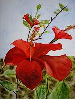 Ulrike-Kroell-Pflanzen-Blumen-Pflanzen-Blumen-Gegenwartskunst-Gegenwartskunst
